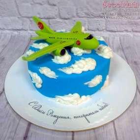 "Торт ""Зелёный самолёт"""